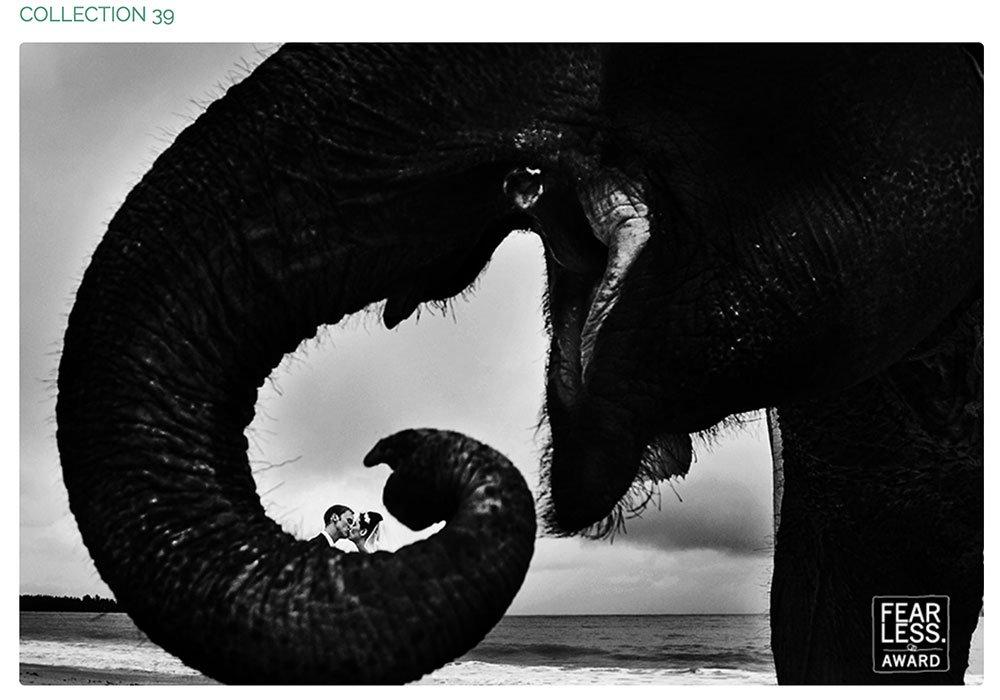 """ Fearless Award "" International wedding photographer photo contest."