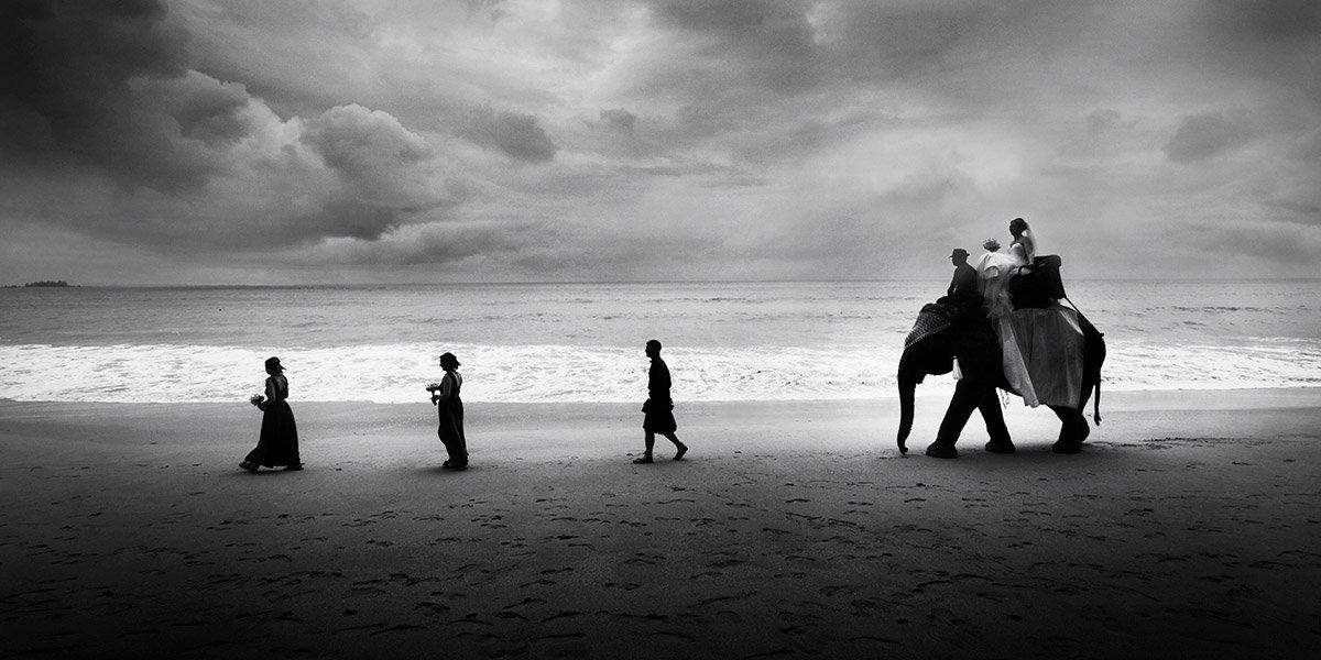 Thailand beach wedding with elephant.